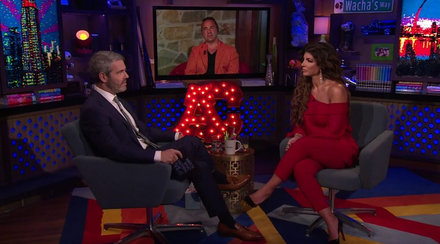 Teresa and Joe Giudice sat down with Andy Cohen to talk about Joe's deportation as well as the status of their marriage.